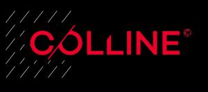 Colline newsletter 6